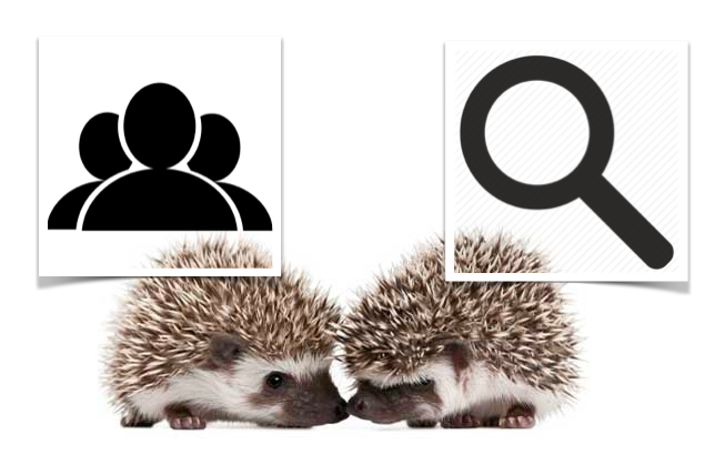 Two hedgehog marketing model